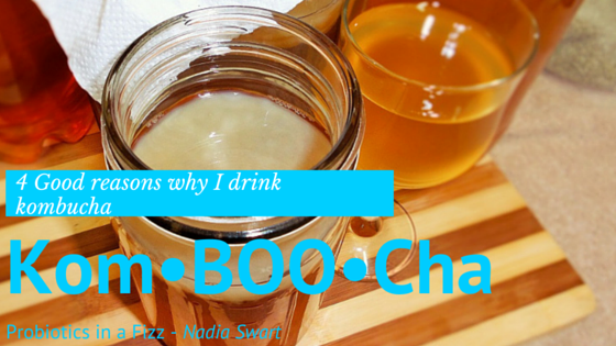 4 GOOD Reasons why I drink Kombucha