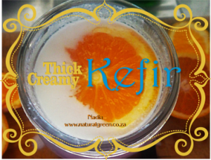 Kefir Thin to thick