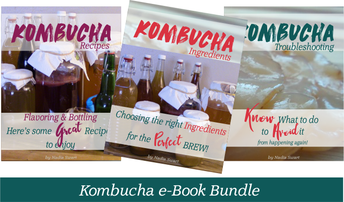 Kombucha ebook Bundle