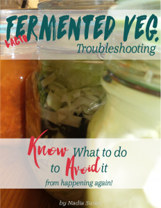 Troubleshooting fermeted veg