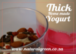 Natural Green Thick home made yogurt
