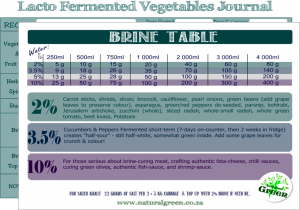 brine table + journal