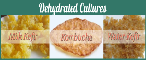 No To dehydrated Cultures