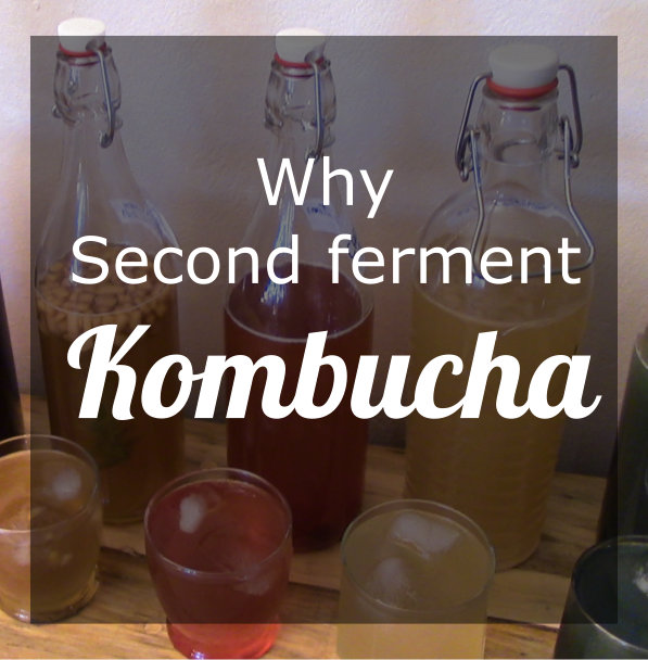 Why Second Ferment Kombucha?
