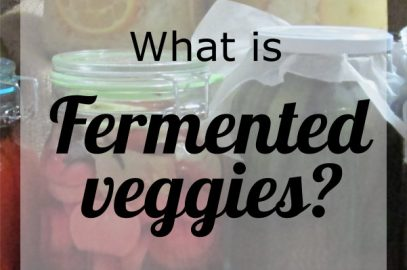 what is fermented veggies
