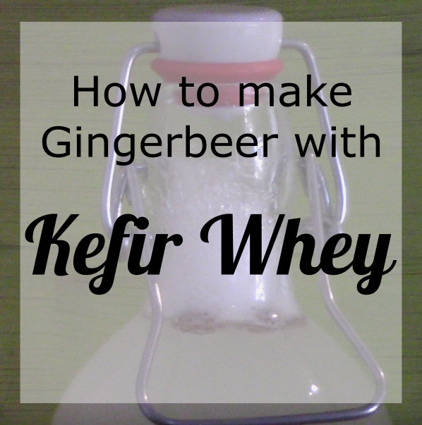 Kefir Whey Soda – Ginger beer