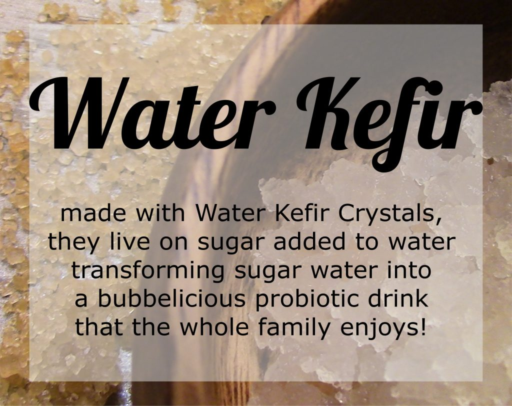what is water kefir